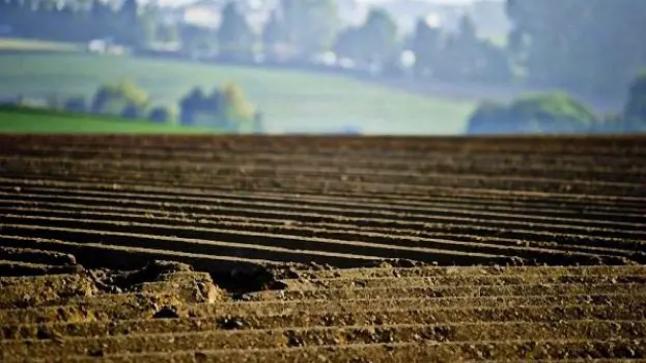تغيير التقييم النقدي المعياري لقطع الأراضي