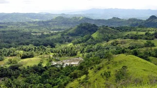 خطر يهدد الطبيعة؛ الكرة الارض تفقد 1.6 مليون هكتار من الغابات كل عام