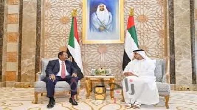 قرقاش: نثمِّن تقدير القيادة السودانية لدور الإمارات وتجربتها