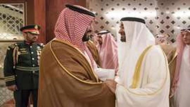 """السعودية والإمارات تثمنان مبادرة """"الشرق الأوسط الأخضر"""""""
