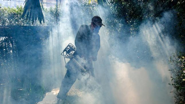 حرائق الغابات تُلهب ألاسكا أكثر الولايات الأمريكية برودةً