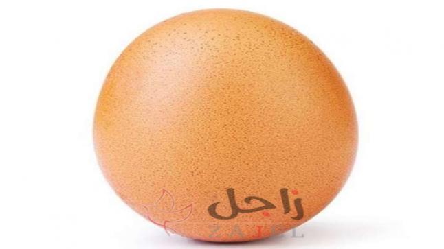 بيضة تحصد ملايين الإعجابات من حساب مجهول